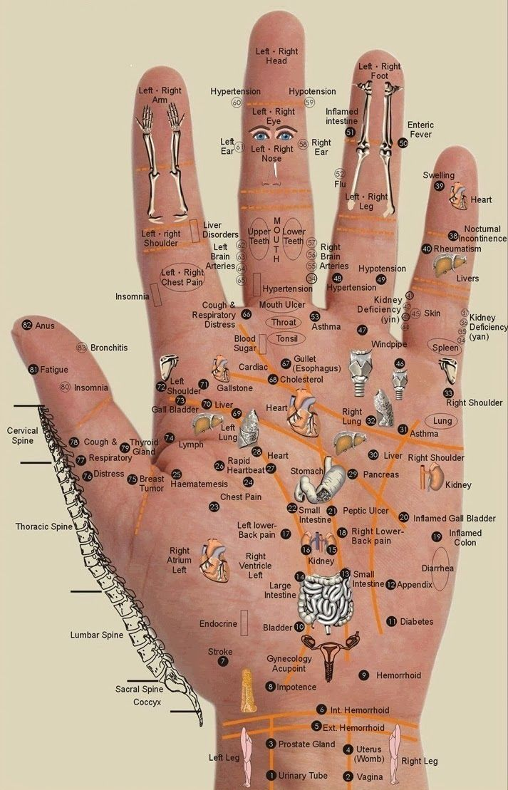 Everything Is In The Palm Of Your Hand