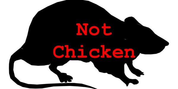 ratnotchicken